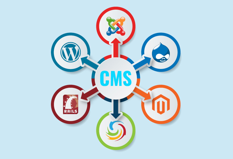best CMS development