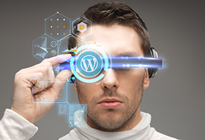 VR Optimized WordPress themes